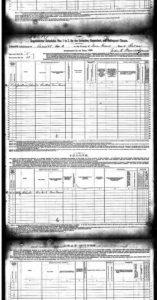 U.S. Federal Census - 1880 Schedules of Defective, Dependent, and Delinquent Classes pg2