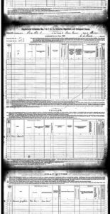 U.S. Federal Census - 1880 Schedules of Defective, Dependent, and Delinquent Classes pg3