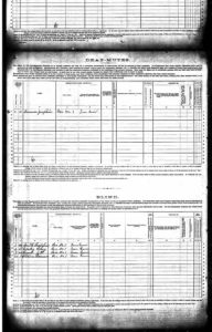 U.S. Federal Census - 1880 Schedules of Defective, Dependent, and Delinquent Classes pg4